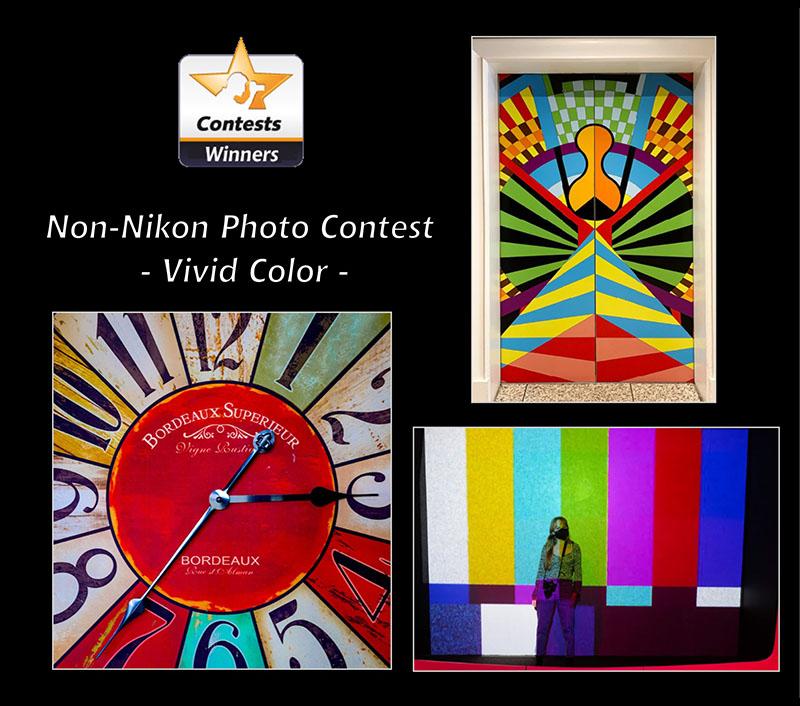 2021-non-nikon-vivid-color-800px.jpg