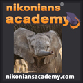 Academy-Logo-Africa-Elephant-SQ_120.jpg