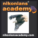 Academy-Logo-SQ-Eagle_150.jpg