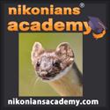 Academy-Logo_Ermine_SQ.jpg