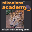 Academy-SQ-Sri_lanka_leopard_110.jpg