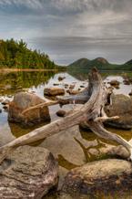 Acadia_145.jpg