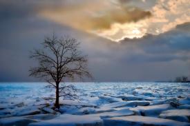 Cold_Wait_275.jpg