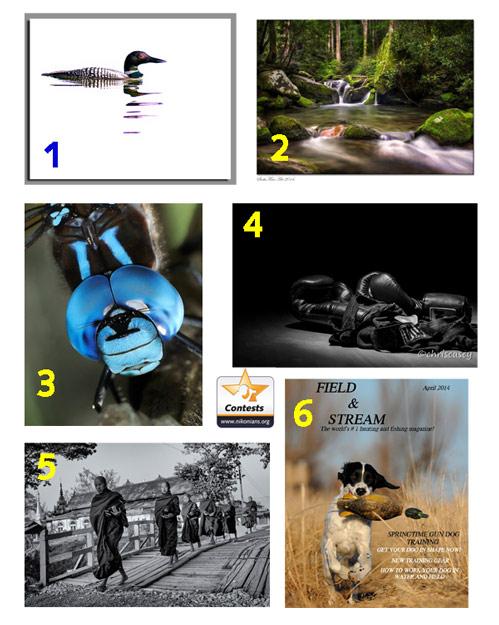 Contest-April04-2014_499.jpg