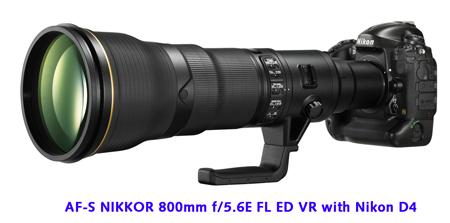 D4_800mm_450.jpg