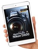 D600-mini_125.jpg
