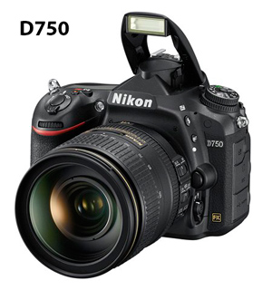 D750_24_120_300.jpg