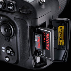D800_cards_250.jpg