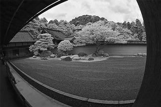 Garden_Emptiness_325.jpg