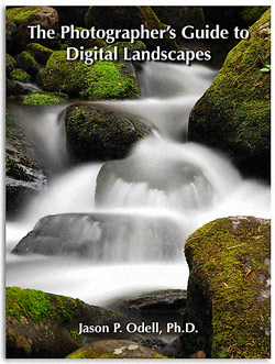 Guide_Digital_Landscapes_250.jpg
