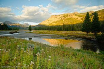 Lamar-Yellowstone_350.jpg