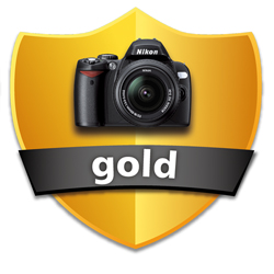 Shield-Gold_250.jpg
