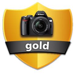 Shield-Gold_250.jpg