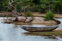 Sri Lanka Les4.jpg