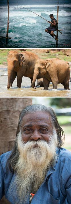 Sri-Lanka_Comp_250.jpg
