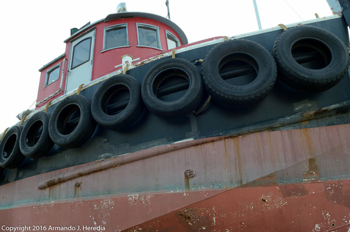 Tugboat_covey_350.jpg