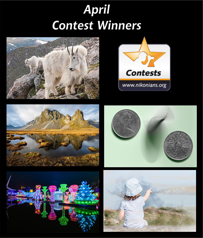 apr19 winners-800px.jpg