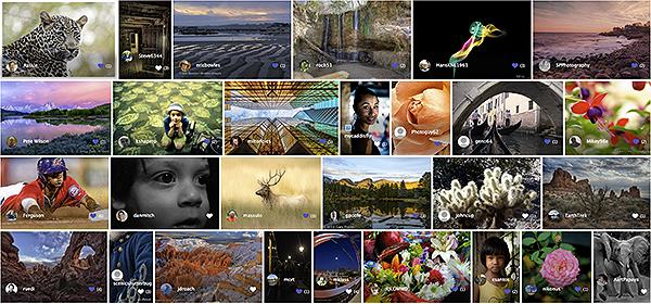 portfolios-screenshot-sample-2018-04-26-600px.png