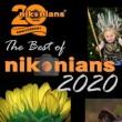 nikonians-winners-2020-451844-110.jpg