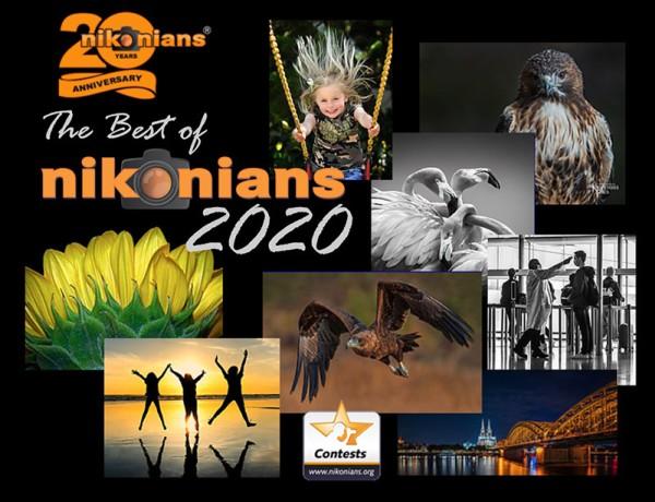nikonians-winners-2020-451844-600.jpg