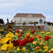 SchlossHofAustria_DSC1703-110px.JPG