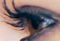 close-up.jpg