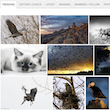 image-box-homepage-screenshot-110px.png