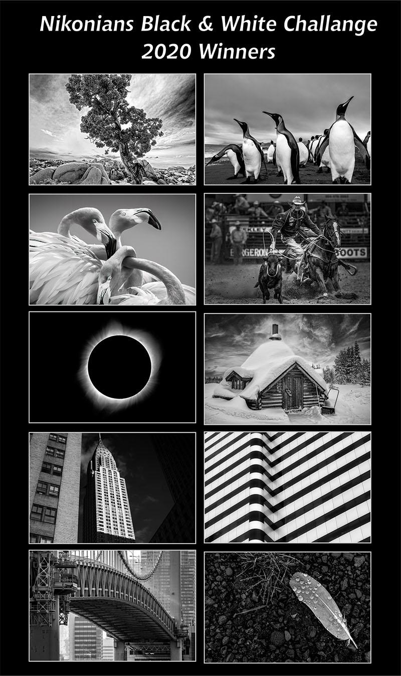 black-white-challange-winners2020-800.jpg