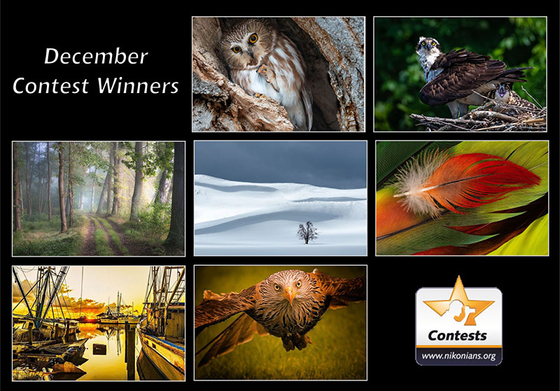 dec19-winners-800px.jpg
