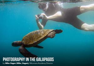 eZine-Mike_Galapagos_300.jpg
