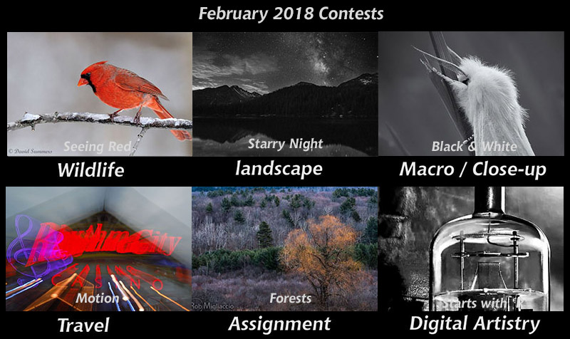 feb-contests800px.jpg