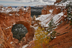 Bryce Canyon Natural Bridge after Fall Snow.JPG