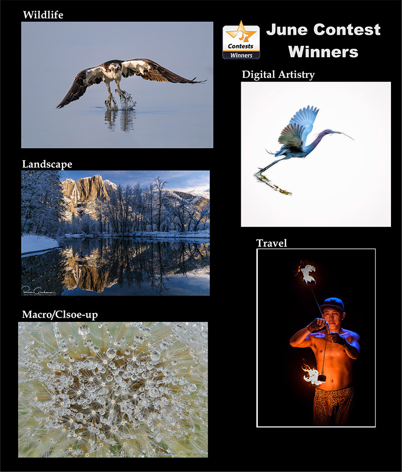 june-winners-1.jpg