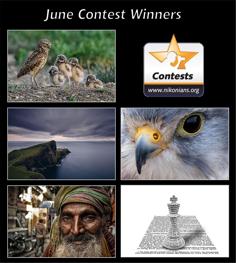 june19-winners-800px.jpg