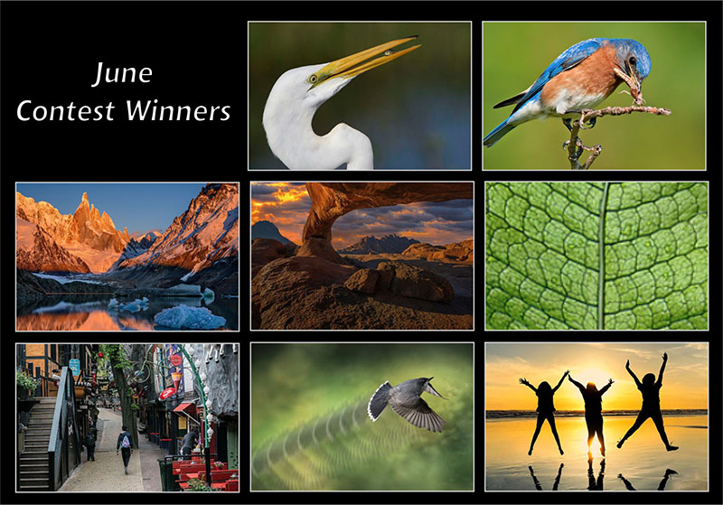 june20-winners-800px.jpg