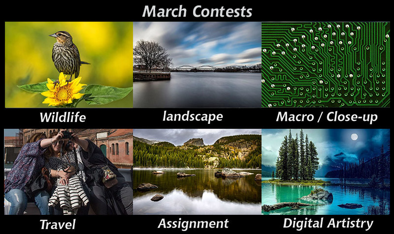 march-contests800px.jpg