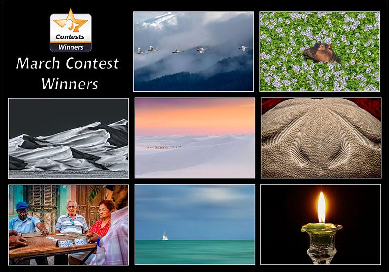 march2021-winners contest-800px.jpg