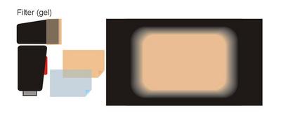 gels-schematic.jpg