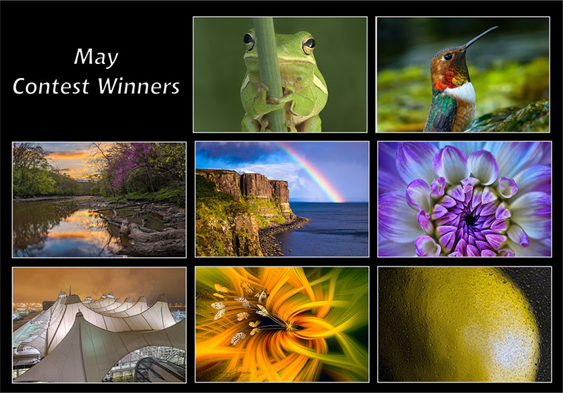 may20-winners-800px.jpg