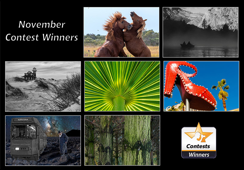 nov2020-winners contest-800px.jpg