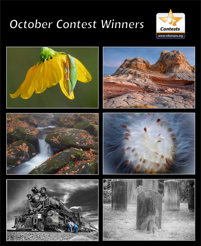 oct19-winners-800px.jpg
