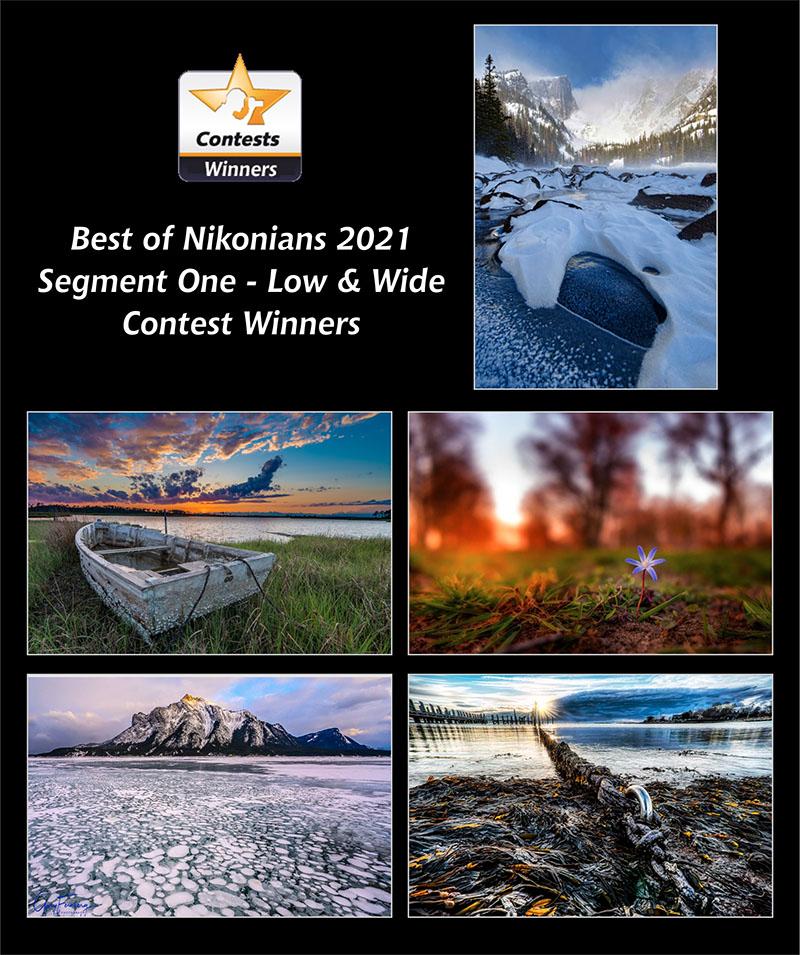 winners 2021-seg1-800px.jpg